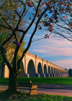 Wow - Nice sunset picture of bridge!