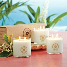 Brighter World candles