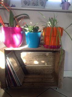 Idée recup: porte plantes et journaux à roulettes