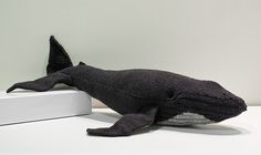 Free - Ravelry: Hazel the Humpback Whale amigurumi knitted pattern // by Bec Brittain Mobile Marin, Knitting Projects, Sewing Projects, Whale Pattern, Free Pattern, Animal Knitting Patterns, Knitted Animals, Humpback Whale, Yarn Crafts