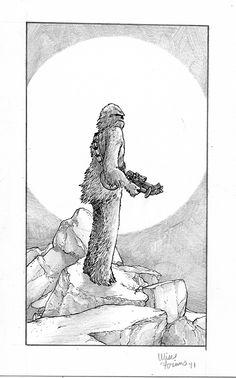 Chewbacca - Ulises Farinas
