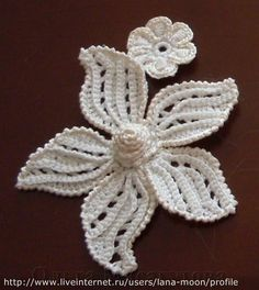 alice brans posted crochet flower tutorial, crochet flowers and irish crochet. to their -crochet ideas and tips- postboard via the Juxtapost bookmarklet. Irish Crochet Patterns, Crochet Motifs, Freeform Crochet, Crochet Designs, Crochet Lace, Crochet Doilies, Crochet Russa, Crochet Video, Russian Crochet