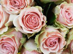 Love needs closeness. Desire needs space. -Esther Perel