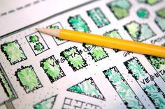 Garden: Planning