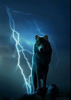 it's for of her wolf character looking all elemental and stormy. Wolf Photos, Wolf Pictures, Anime Wolf, Beautiful Wolves, Animals Beautiful, Wolf Character, Wolf Artwork, Wolf Painting, Fantasy Wolf