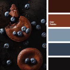 A very impressive and noble palette. An original and unexpected combination of gray-blue, blueberry, brown and dark brown. They perfectly contrast with eac.