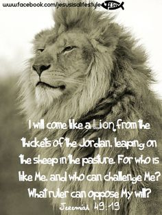 Bible quotes from the lion. Biblical Quotes, Bible Verses Quotes, Bible Scriptures, Lion Bible Verse, Spiritual Quotes, Tribe Of Judah, Lion Lamb, Infj, Lion Of Judah Jesus