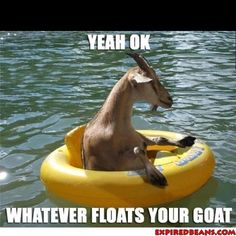 Whatever floats your goat :)