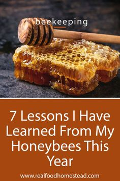 7 Lessons I Have Learned From My Honeybees This Year Honey Recipes, Real Food Recipes, Chicken Tractors, Farm Chicken, Beekeeping For Beginners, Backyard Beekeeping, Worm Farm, Worm Composting, Annual Plants