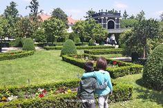 Vienna. Un fine settimana tra palazzi imperiali e verdissimi giardini