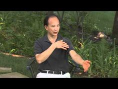 http://www.springforestqigong.com  My favorite qigong While you may not be able to see the energy channels in your body you can quickly and easily experience how they work. In an excerpt from the Spring Forest Qigong Fundamentals DVD, Chunyi Lin demonstrates a simple technique anyone can use to stimulate the energy of your bodys breathing system, open your sinuses...