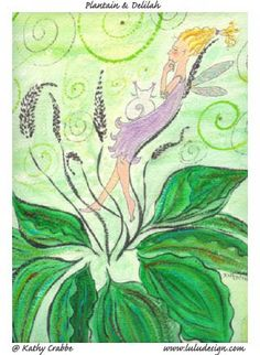 Be Your Own Herbal Expert  Part 6  - Herbal Oils, Infused vs. Essential