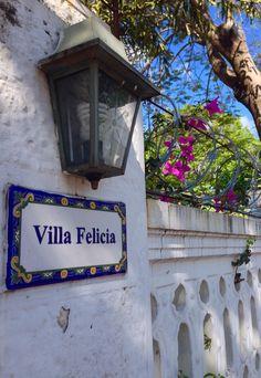 Farol y flor . Asunción