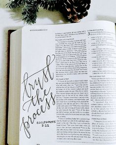bible journaling // waiting season // trust the process Bible Art, Scripture Art, Bible Scriptures, Ecclesiastes 3 11, Bibel Journal, Bible Doodling, Bible Notes, In Christ Alone, Illustrated Faith