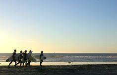 San Diego's best beaches: http://thingstodo.viator.com/san-diego/san-diegos-best-beaches/