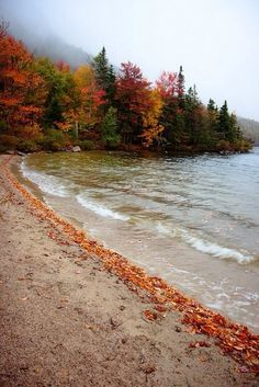 fall by the lake with sandy beach