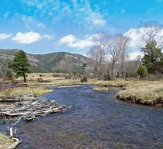 cimarron nm | New Mexico's Best Fly Fishing Rivers and Streams