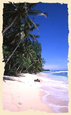 Honeymoon Beach - so beautiful - one of the most  beautiful beaches I have ever been to