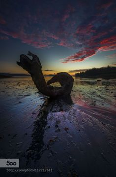 The Dragon by akcharly  Alaska blue clouds coast ketchikan ocean sand seascape sunset water The Dragon akcharly