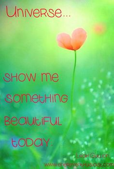show me something beautiful today. Inspired by Dr Dain Heer's Tour Of Consciousness Video! Access Bars, Access Consciousness, Finding Inner Peace, Just For Today, Love Me Quotes, Joy And Happiness, Something Beautiful, This Or That Questions, Universe