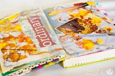 Visual Journal- spin off of the Smash Notebook at Micheals Craft Stores