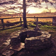 St Brigid's Well- Ireland