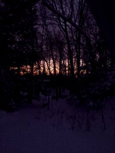Winter sunset, through the woods and over the lake