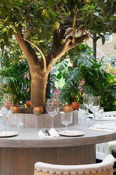 10 London Outdoor Restaurants You Ve Got To Book Now