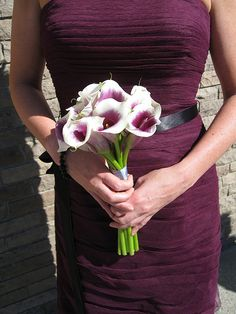 Calla Lillies <3 I would loooove these flowers w/ the teal!