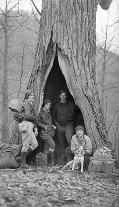 """Giant Trees of Appalachia and the People Who Lived in Them """" """" My fascination with hollow trees began when I watched Sam Gribley set up camp inside one in the film adaptation of My Side of the. Vintage Pictures, Old Pictures, Old Photos, Appalachian People, Appalachian Mountains, Appalachian Trail, American Chestnut, Giant Tree, Into The West"""