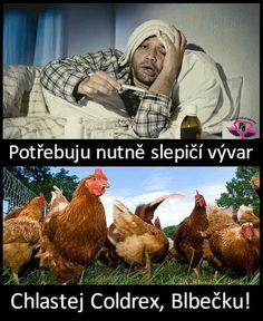 Funny Fails, Funny Memes, Jokes, Funny People, Animals And Pets, Haha, Pets, Chistes, Funny Jokes