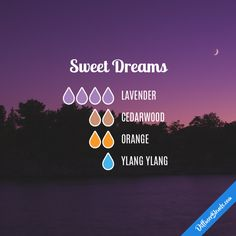 Sweet Dreams - Essential Oil Diffuser Blend