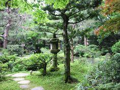 cha-niwa   cha niwa or roji tea garden japanese tea garden in