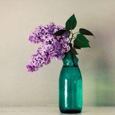 2802 Best Still Life Flowers Images Floral Paintings Flower Art