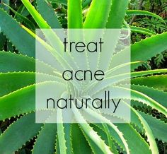 All Natural Acne Solutions
