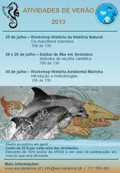 Atividades de verão da Escola de Mar 2013 www.escolademar.pt