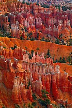 Paisatges (Bryce Canyan Nationalpark Utah, USA)