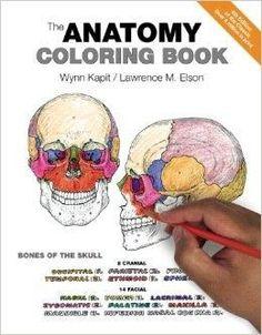 the anatomy coloring book 4 csm wkb - Veterinary Anatomy Coloring Book