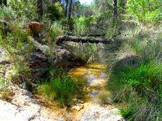 Atravesando la rambla hacia el huerto urraco