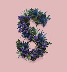 Thistle Type by Thomas Wightman