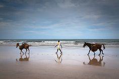 Praia de Cueira, Ilha de Boipeba, Bahia, Brasil by Romula Rejon