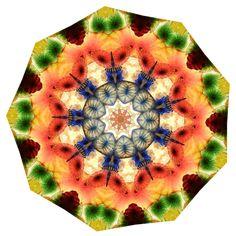 Kaleidoscope image created from photo at Sumopaint