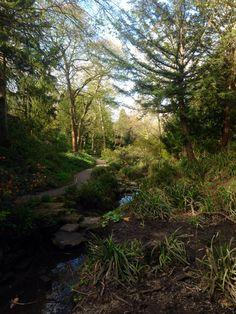 Saltwell Park, Gateshead UK