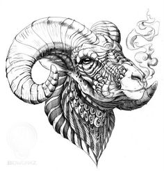 Drawn with Copic multliner, black colored pencil, ball point pen, Pitt Grey Artist Brush, and graphite on cold press illustration board. Tattoo Drawings, Body Art Tattoos, Sleeve Tattoos, Arte Aries, Black Sheep Tattoo, Tattoo Main, Widder Tattoos, Sheep Drawing, Big Horn Sheep