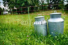 Milchkannen auf grüner Wiese