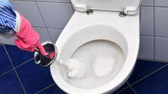 Mit etwas Waschmittel wird die Toilette strahlend rein.