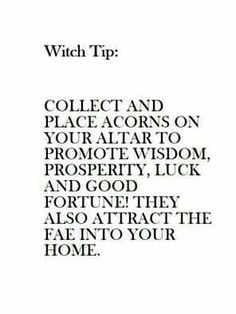 Huh I didn't know this but I've had a bowl of acorns in my room for three years now and I've never wanted to throw them out for some reason. Wiccan Witch, Wicca Witchcraft, Herbal Witch, Witch Spell, Sea Witch, Witch Board, Witchcraft For Beginners, Eclectic Witch, Practical Magic