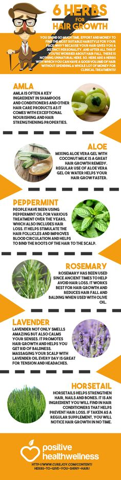 6 Herbs for Hair Growth – Positive Health Wellness Infographic http://ultrahairsolution.com/how-to-grow-natural-hair-fast-and-healthy/home-remedies-for-hair-growth-and-thickness/fix-bald-spots/