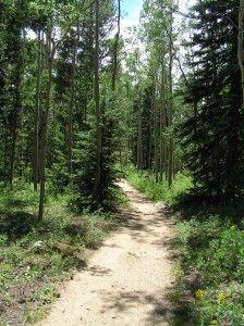 Hiking health benefits (scheduled via http://www.tailwindapp.com?utm_source=pinterest&utm_medium=twpin&utm_content=post185777005&utm_campaign=scheduler_attribution)