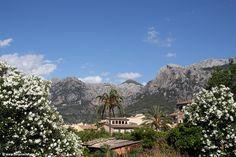 Mehr Mallorca-Fotos findet ihr auf meiner Webseite: www.florianwillmann.de